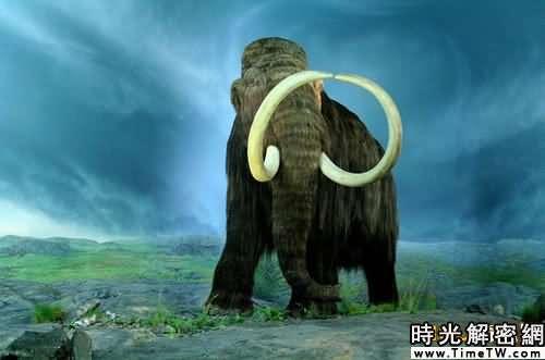 十三大怪異遠古動物:雕齒獸形似甲殼蟲汽車(3)