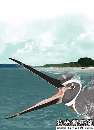 秘魯發現巨型企鵝化石 號稱「水中之王」(圖)