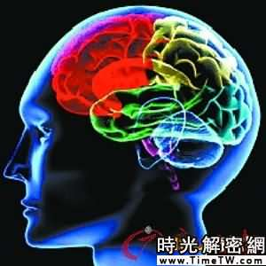 煙癮咖啡癮影響大腦 或減少老年癡呆幾率(圖)