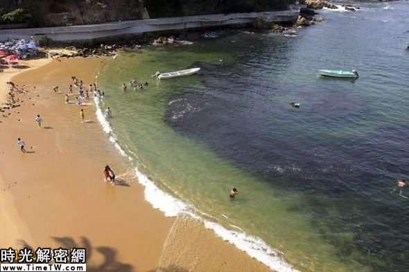 和漁民們的反應相反,一些在海灘的遊泳者對此心存疑慮,紛紛避開水面上岸
