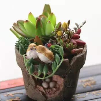 还有各种小动物花盆,小朋友的最爱~植物与动物的完美结合