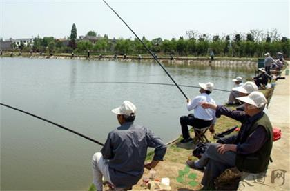 夏季釣魚技巧