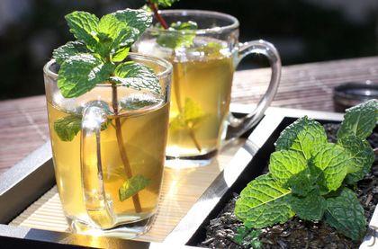 適合夏天喝的養生茶