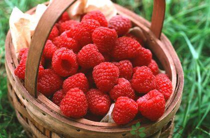 冬季吃什麼水果最養腎