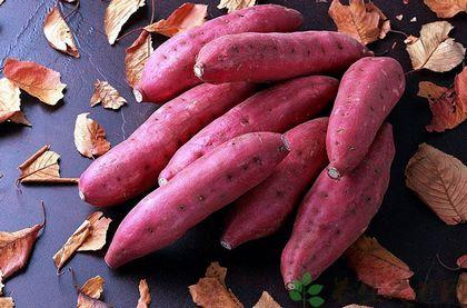 紅薯什麼時候吃對身體最好