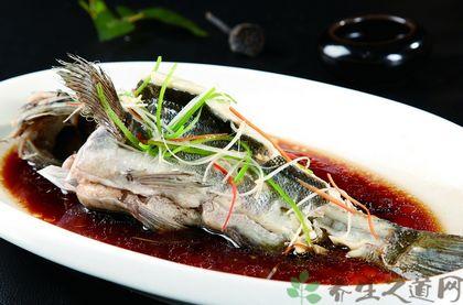 清蒸石斑魚是哪個地方的菜