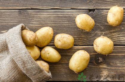 土豆怎樣保存不發芽