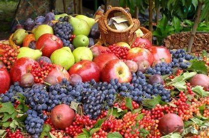 中秋節吃什麼水果