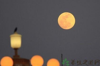 上海人過中秋節的習俗