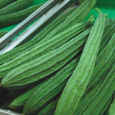絲瓜怎麼吃