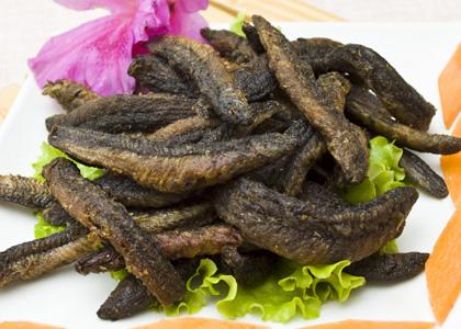 泥鰍的營養價值