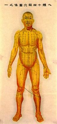 人體十四經穴圖像