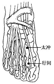 圖2-5-4