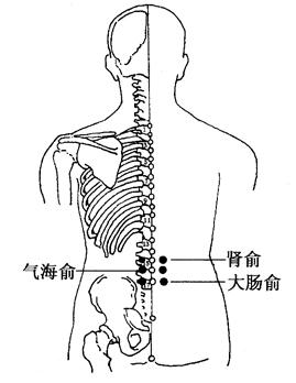 圖4-5-2腎俞、氣海俞、大腸俞