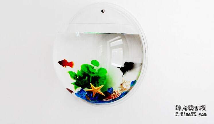 室內裝飾之魚缸的風水學需知
