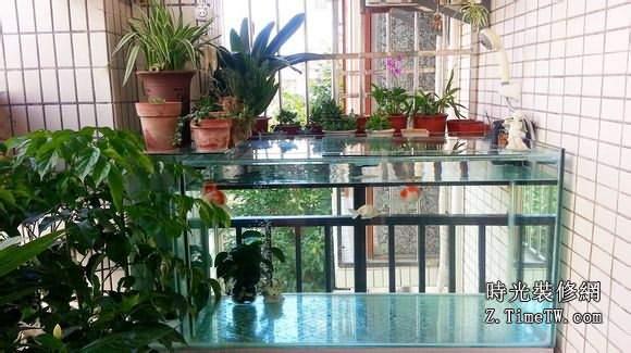 家裝無小事 陽台魚缸擺放風水