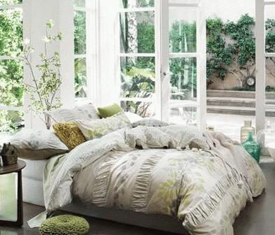 臥室植物風水解析  臥室植物的擺放風水及注意事