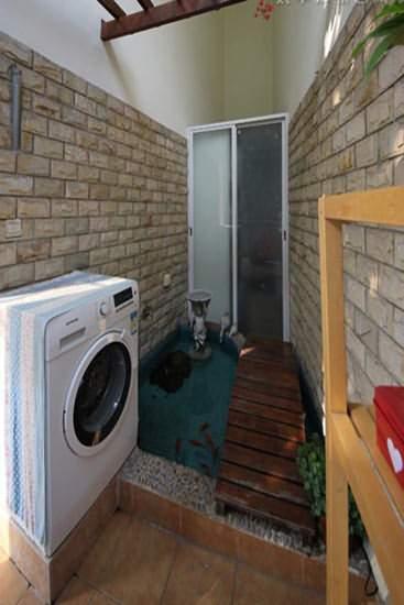 洗衣機擺放陽颱風水講究